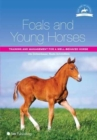Image for Foals and young horses  : training and management for a well-behaved horse