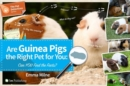 Image for Are Guinea Pigs the Right Pet for You : Can You Find the Facts?