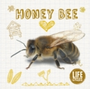 Image for Life cycle of a... honey bee