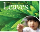 Image for Leaves