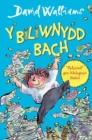 Image for Biliwnydd bach, y