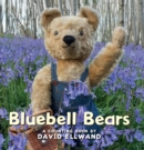 Image for Bluebell bears  : a counting book