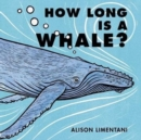 Image for How long is a whale?