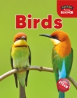 Image for Foxton Primary Science: Birds (Key Stage 1 Science)