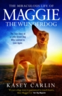 Image for The miraculous life of Maggie the wunderdog