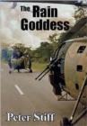 Image for The rain goddess  : a novel