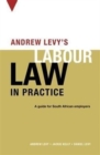 Image for Andrew Levy's guide to South African labour law