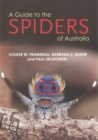 Image for A guide to the spiders of Australia