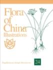 Image for Flora of China Illustrations, Volume 24 - Flagellariaceae through Marantaceae