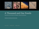 Image for A Thousand and One Fossils - Discoveries in the Desert at Al Gharboa, United Arab Emirates