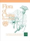 Image for Flora of China Illustrations, Volume 19 - Cucurbitacaee through Valerianaceae, with Berberidaceae and Annonaceae