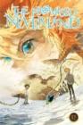 Image for The promised NeverlandVolume 12
