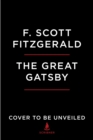 Image for The Great Gatsby : The Graphic Novel