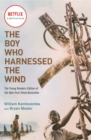 Image for The boy who harnessed the wind