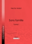 Image for Sans Famille: Tome I