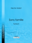 Image for Sans Famille: Tome Ii