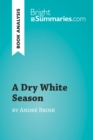Image for Dry White Season by Andre Brink (Book Analysis): Detailed Summary, Analysis and Reading Guide