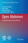Image for Open Abdomen : A Comprehensive Practical Manual