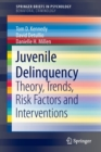 Image for Juvenile Delinquency : Theory, Trends, Risk Factors and Interventions
