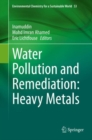 Image for Water Pollution and Remediation: Heavy Metals