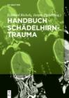 Image for Handbuch Schadelhirntrauma
