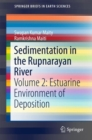 Image for Sedimentation in the Rupnarayan River : Volume 2: Estuarine Environment of Deposition