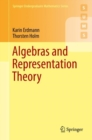 Image for Algebras and representation theory