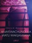 Image for Anayewachungulia watu wakijamiiana - Hadithi Fupi ya Mapenzi