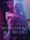 Image for Mfanyakazi wa Sulubu - Hadithi Fupi ya Mapenzi