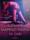 Image for Kufanya Mapenzi Ndani ya Gari - Hadithi Fupi ya Mapenzi