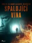 Image for Spalujici vina