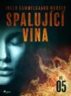 Image for Spalujici vina - Dil 5