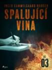 Image for Spalujici vina - Dil 3