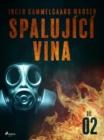 Image for Spalujici vina - Dil 2