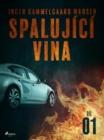 Image for Spalujici vina - Dil 1