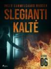 Image for Slegianti kalte. 6 skyrius