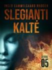 Image for Slegianti kalte. 5 skyrius