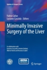 Image for Minimally invasive surgery of the liver