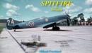 Image for Spitfire in Sweden