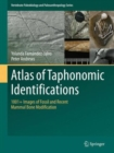 Image for Atlas of taphonomic identifications  : 1001+ images of fossil and recent mammal bone modification