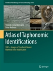 Image for Atlas of Taphonomic Identifications: 1001+ Images of Fossil and Recent Mammal Bone Modification : 0