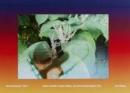 Image for Alien Invader Super Baby (Synchromaterialism IV)