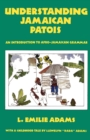 Image for Understanding Jamaican patois  : an introduction to Afro-Jamaican grammar