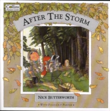 Image for After the Storm