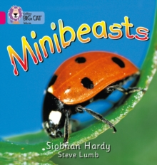 Image for Minibeasts : Band 01a/Pink a