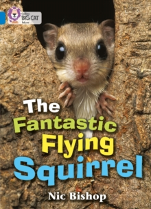 Image for The Fantastic Flying Squirrel : Band 04/Blue