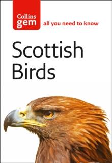 Scottish birds - Thom, Valerie