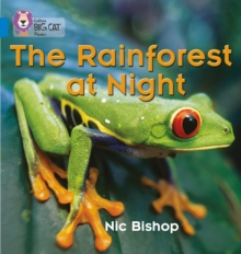 Image for The Rainforest at Night : Band 04/Blue