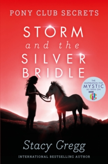 Image for Storm and the silver bridle