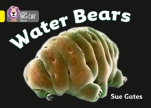 Image for Water bears
